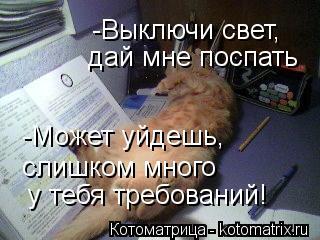 Котоматрица: -Выключи свет,  дай мне поспать -Может уйдешь,  слишком много  у тебя требований!