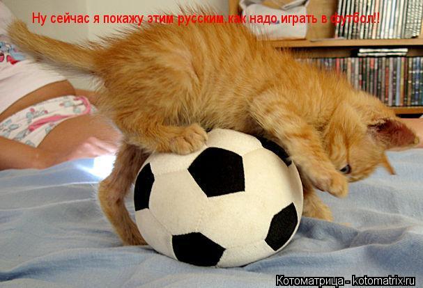 Котоматрица: Ну сейчас я покажу этим русским,как надо играть в футбол!!
