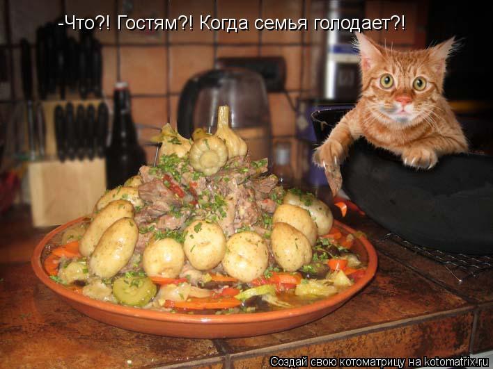 Котоматрица: -Что?! Гостям?! Когда семья голодает?!