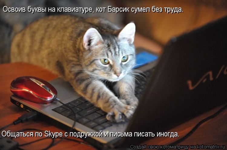 Котоматрица: Освоив буквы на клавиатуре, кот Барсик сумел без труда. Общаться по Skype с подружкой и письма писать иногда.