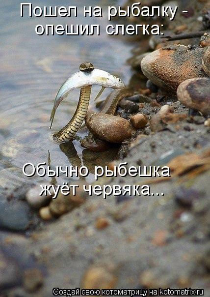 Котоматрица: Пошел на рыбалку -  опешил слегка: Обычно рыбешка жуёт червяка...