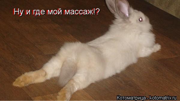 Котоматрица: Ну и где мой массаж!? Ну и где мой массаж!?