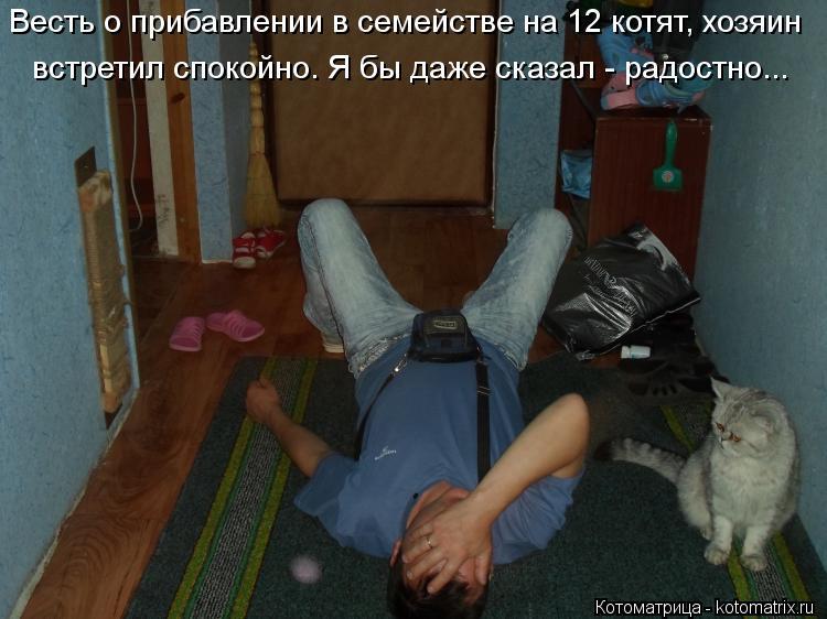 Котоматрица: Весть о прибавлении в семействе на 12 котят, хозяин встретил спокойно. Я бы даже сказал - радостно...