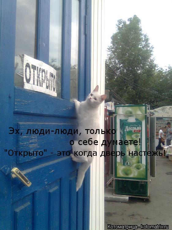 """Котоматрица: Эх, люди-люди, только  о себе думаете! """"Открыто"""" - это когда дверь настежь!"""