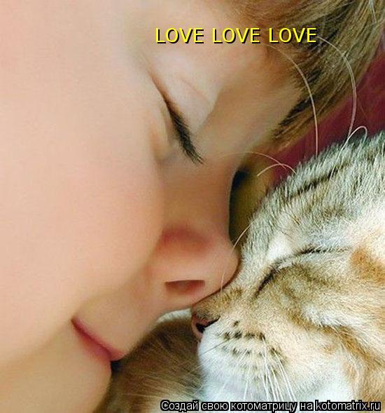 Котоматрица: LOVE LOVE LOVE