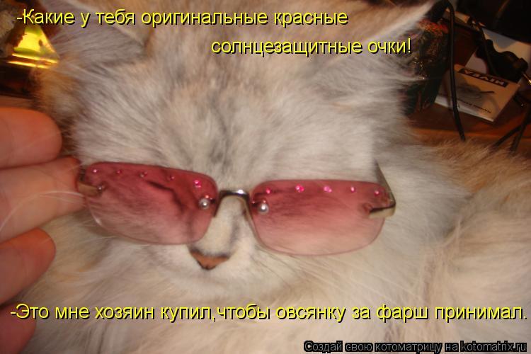 Котоматрица: -Какие у тебя оригинальные красные  солнцезащитные очки! -Это мне хозяин купил,чтобы овсянку за фарш принимал.