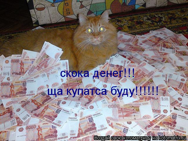 Котоматрица: скока денег!!! ща купатса буду!!!!!!