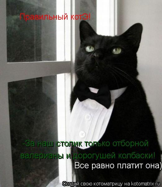 Котоматрица: -За наш столик только отборной  валерианы и дорогушей колбаски!  Все равно платит она) Правильный котЭ!