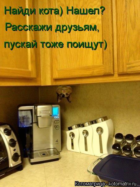 Котоматрица: Найди кота) Нашел?  Расскажи друзьям, пускай тоже поищут)