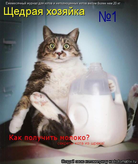 Котоматрица: Ежемесячный журнал для котов и неполноценных котов весом более чем 20 кг Щедрая хозяйка №1 Как получить молоко? секреты кота из шрека!