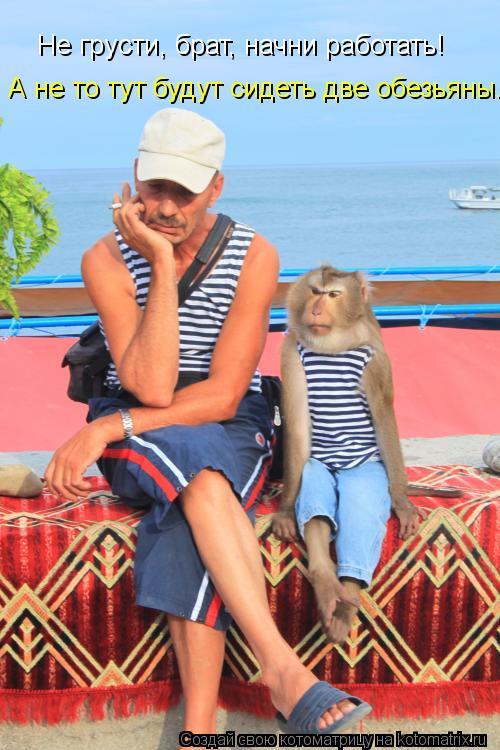 Котоматрица: Не грусти, брат, начни работать!  А не то тут будут сидеть две обезьяны.