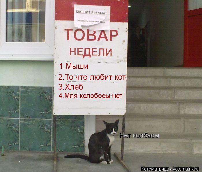 Котоматрица: 1.Мыши 2.То что любит кот 3.Хлеб 4.Мля колобосы нет Нет колбасы