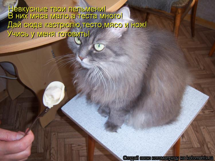 Котоматрица: Невкусные твои пельмени! В них мяса мало,а теста много! Дай сюда кастрюлю,тесто,мясо и нож! Учись у меня готовить!