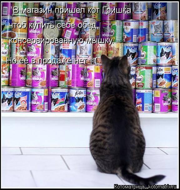 Котоматрица: В магазин пришел кот Гришка чтоб купить себе обед, консервированную мышку. Но её в продаже нет =(