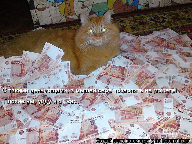 Котоматрица: С такими деньжищами, а мышей себе позволить не можете! Плохие вы, уйду я от вас.