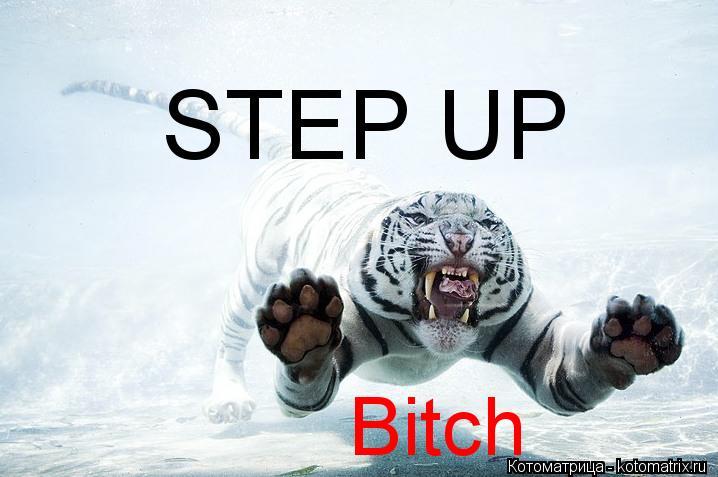 Котоматрица: STEP UP Bitch