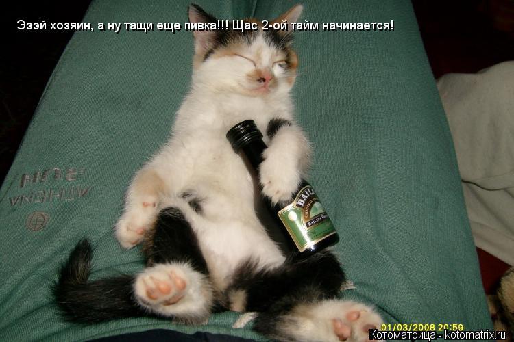 Котоматрица: Эээй хозяин, а ну тащи еще пивка!!! Щас 2-ой тайм начинается! Эээй хозяин, а ну тащи еще пивка!!! Щас 2-ой тайм начинается!