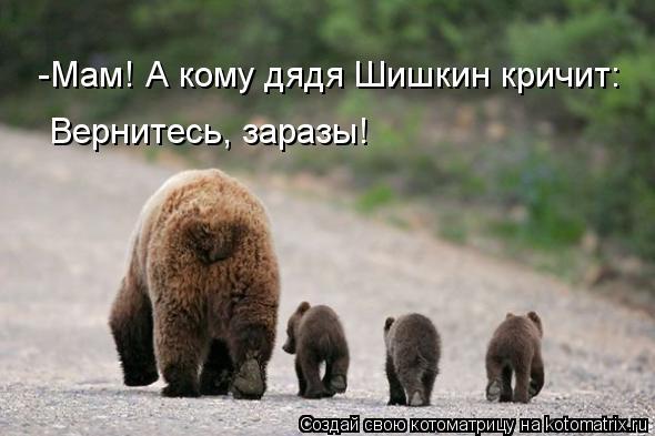 Котоматрица: -Мам! А кому дядя Шишкин кричит: Вернитесь, заразы!