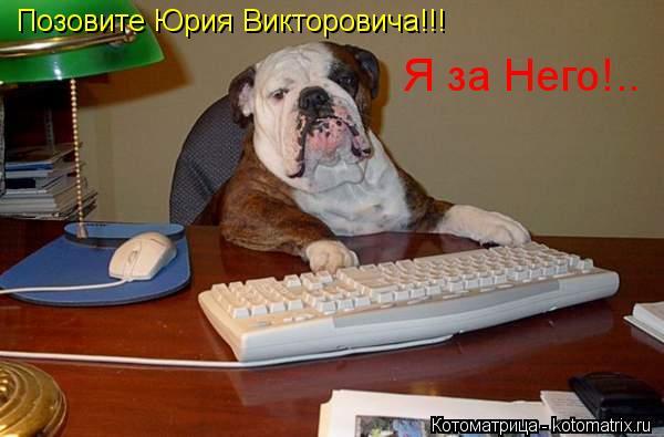 Котоматрица: Позовите Юрия Викторовича!!! Я за Него!..