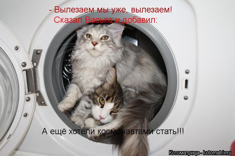 Котоматрица: - Вылезаем мы уже, вылезаем! Сказал Васька и добавил: А ещё хотели космонавтами стать!!!