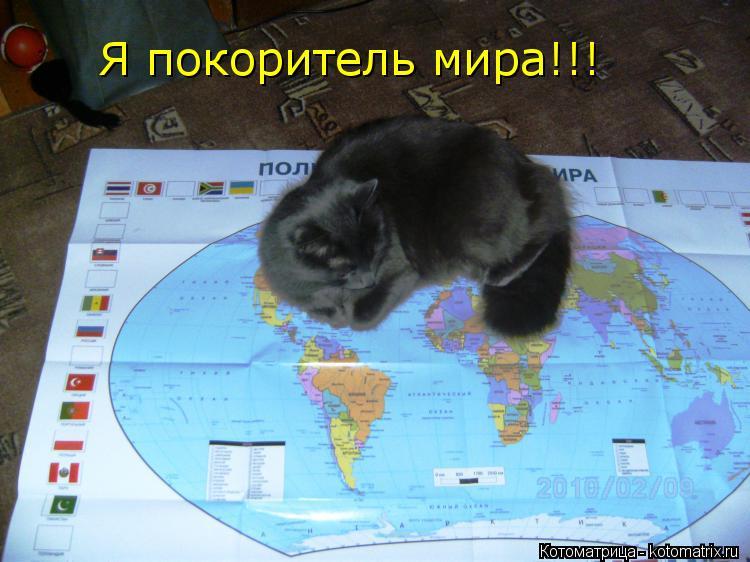 Котоматрица: Я покоритель мира!!!