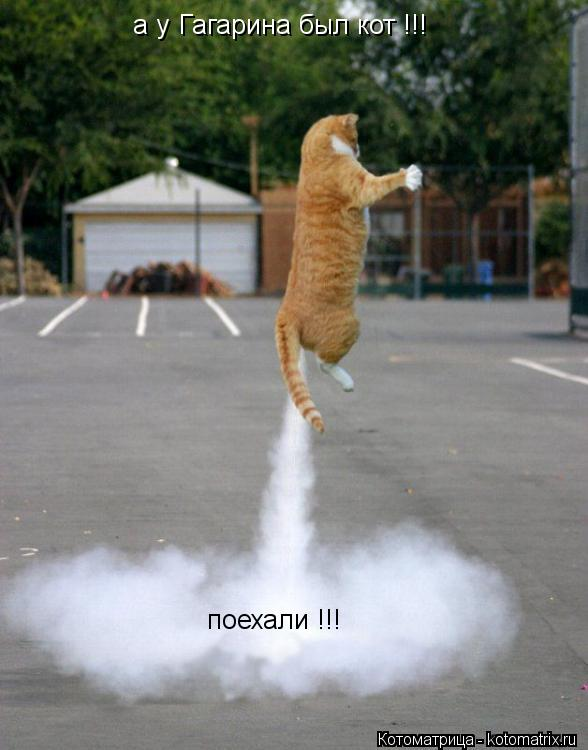 Котоматрица: а у Гагарина был кот !!! поехали !!!