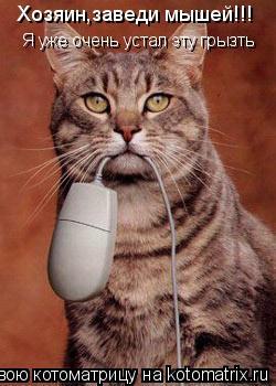 Котоматрица: Хозяин,заведи мышей!!! Я уже очень устал эту грызть