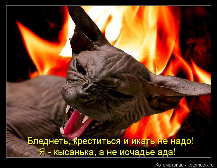 Котоматрица: Бледнеть, креститься и икать не надо! Я - кысанька, а не исчадье ада!