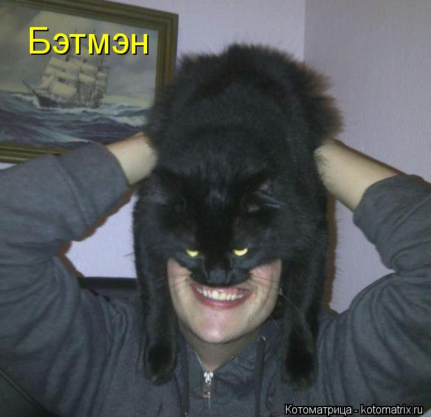 Котоматрица: Бэтмэн