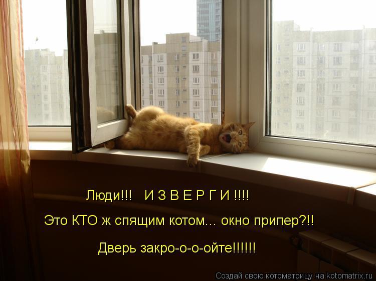 Котоматрица: Люди!!!   И З В Е Р Г И !!!! Это КТО ж спящим котом... окно припер?!! Дверь закро-о-о-ойте!!!!!!