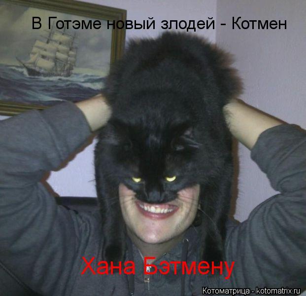 Котоматрица: В Готэме новый злодей - Котмен Хана Бэтмену
