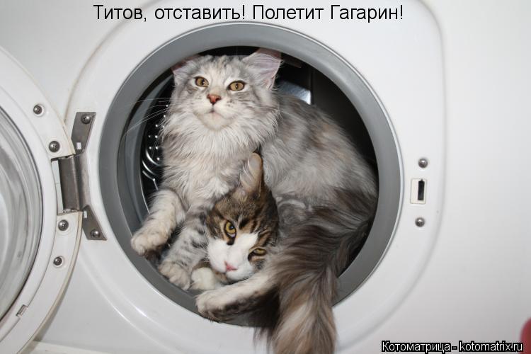 Котоматрица: Титов, отставить! Полетит Гагарин!