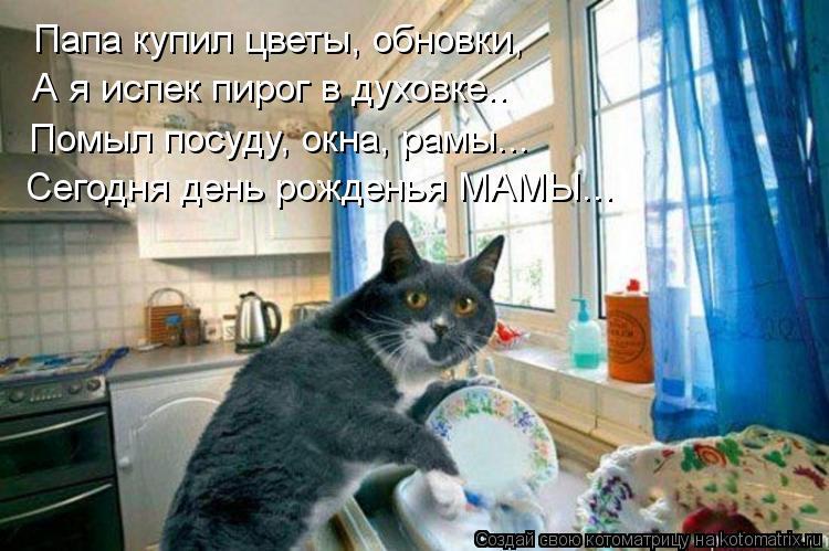 Котоматрица: Папа купил цветы, обновки, А я испек пирог в духовке.. Помыл посуду, окна, рамы... Сегодня день рожденья МАМЫ...