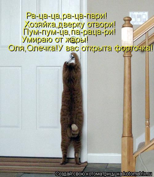 Котоматрица: Ра-ца-ца,ра-ца-пари! Хозяйка,дверку отвори! Пум-пум-ца,па-раца-ри! Умираю от жары! Оля,Олечка!У вас открыта форточка!