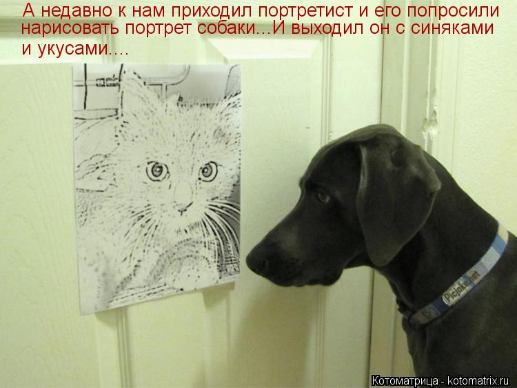 Котоматрица: А недавно к нам приходил портретист и его попросили нарисовать портрет собаки...И выходил он с синяками и укусами....