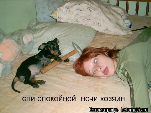 Котоматрица: спи спокойной  ночи хозяин
