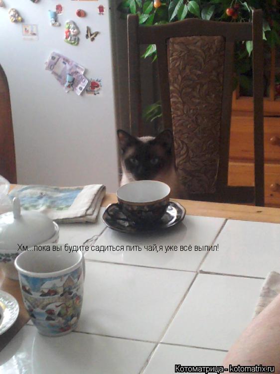 Котоматрица: Хм...пока вы будите садиться пить чай,я уже всё выпил!