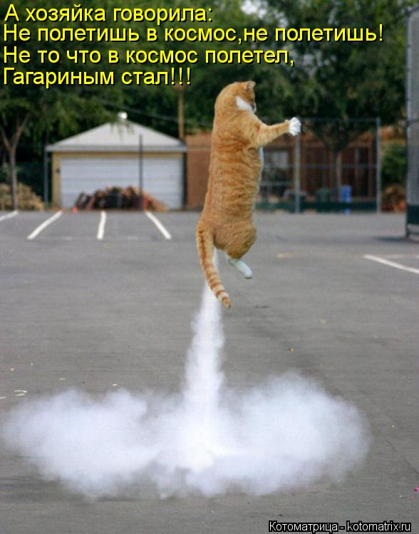 Котоматрица: А хозяйка говорила: Не полетишь в космос,не полетишь! Не то что в космос полетел, Гагариным стал!!!