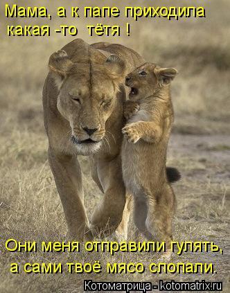 Котоматрица: Мама, а к папе приходила какая -то  тётя ! Они меня отправили гулять, а сами твоё мясо слопали.