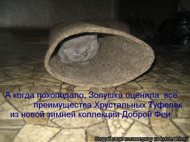 Котоматрица: А когда похолодало, Золушка оценила  все преимущества Хрустальных Туфелек  из новой зимней коллекции Доброй Феи
