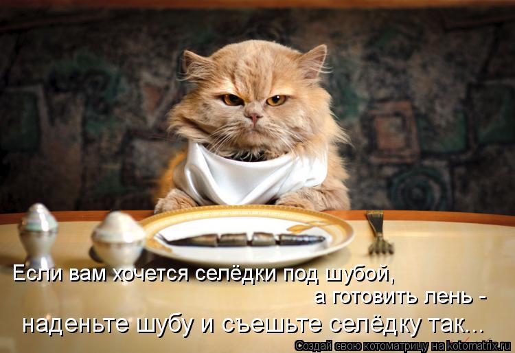 Котоматрица: Если вам хочется селёдки под шубой,  а готовить лень -  наденьте шубу и съешьте селёдку так...