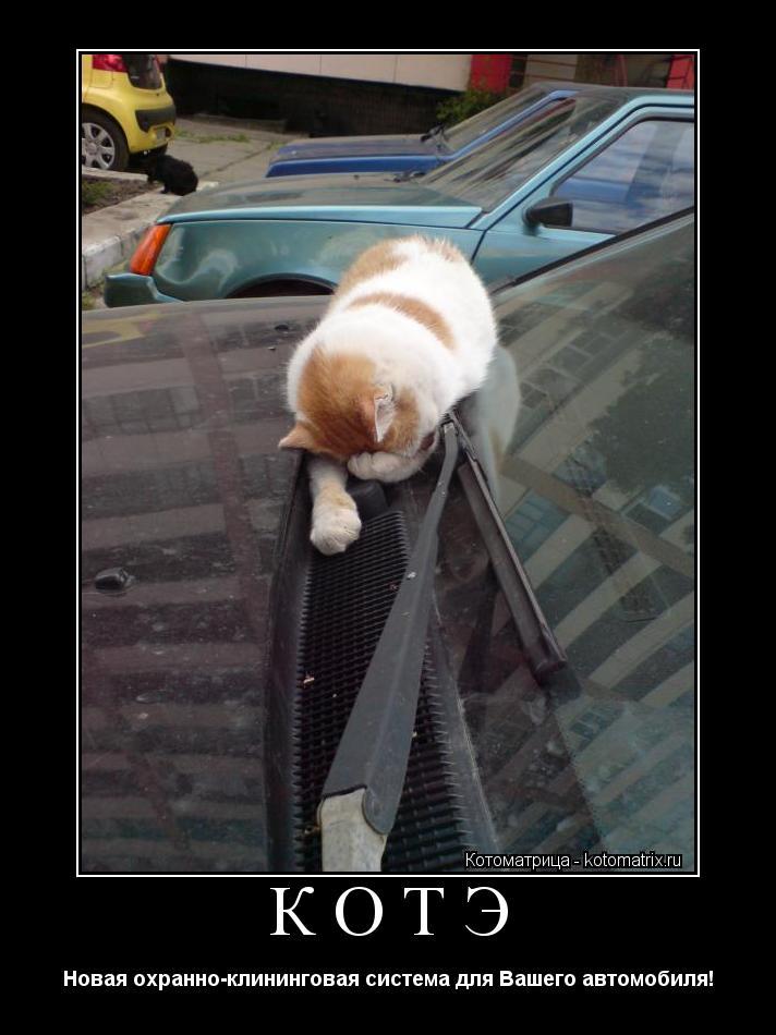 Котоматрица: КОТЭ Новая охранно-клининговая система для Вашего автомобиля!
