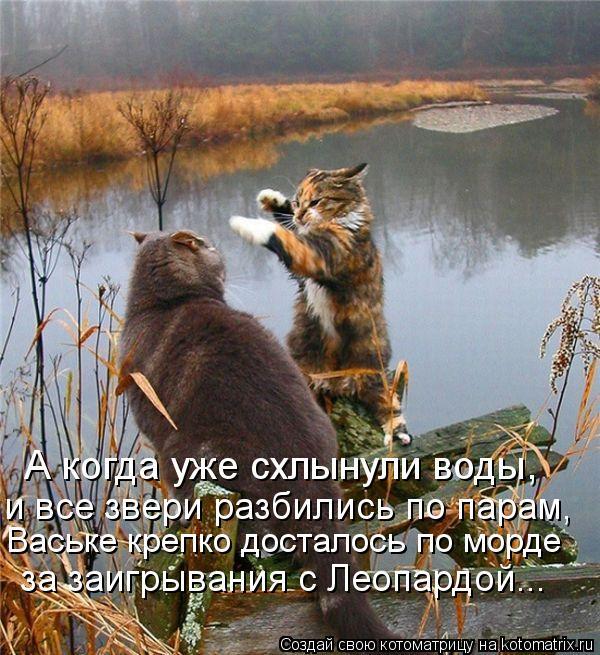 Котоматрица: Ваське крепко досталось по морде за заигрывания с Леопардой... А когда уже схлынули воды, и все звери разбились по парам,