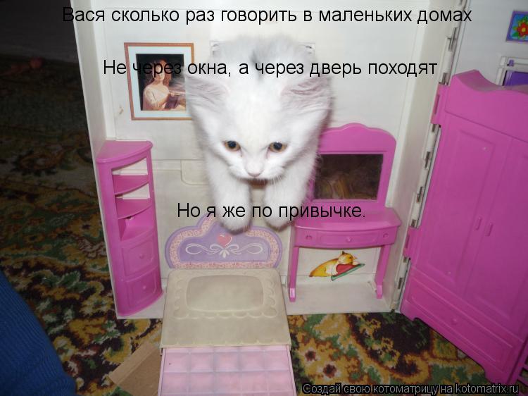 Котоматрица: Вася сколько раз говорить в маленьких домах  Не через окна, а через дверь походят Но я же по привычке.