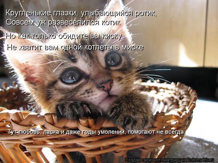 Котоматрица: Кругленькие глазки, улыбающийся ротик, Совсем уж развеселился котик Но как только обидите вы киску Не хватит вам одной котлеты в миске Тут