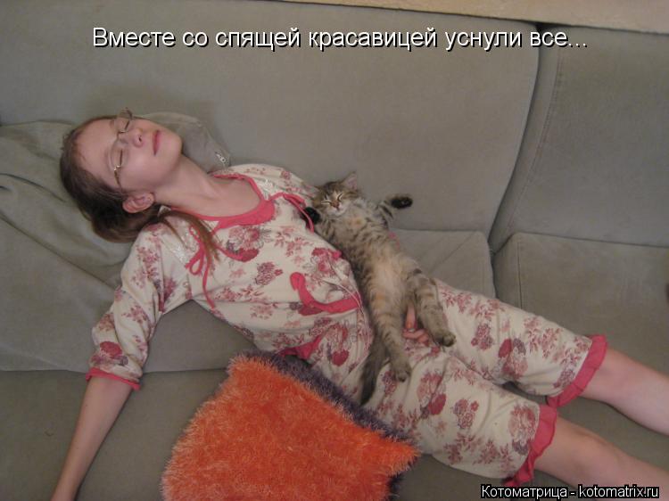 Котоматрица: Вместе со спящей красавицей уснули все...