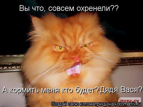 Котоматрица: Вы что, совсем охренели?? А кормить меня кто будет? Дядя Вася?