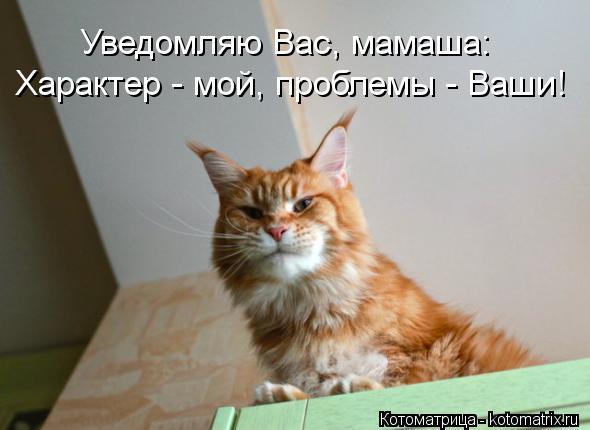 Котоматрица: Уведомляю Вас, мамаша: Характер - мой, проблемы - Ваши!