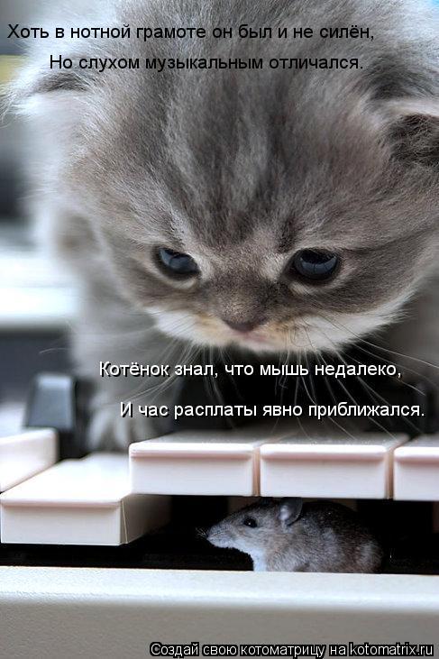 Котоматрица: Хоть в нотной грамоте он был и не силён, Но слухом музыкальным отличался. Котёнок знал, что мышь недалеко, И час расплаты явно приближался.