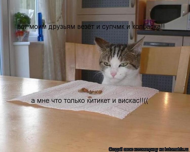 Котоматрица: вот моим друзьям везёт и супчмк и колбаска!! а мне что только китикет и вискас!!((